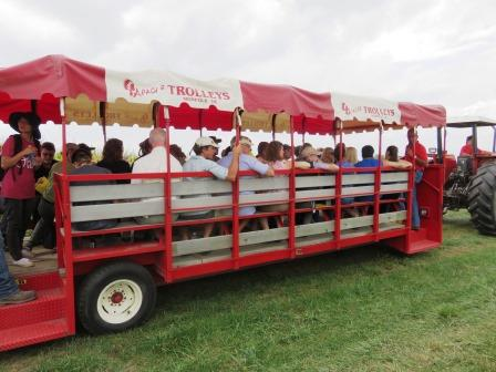 Wagon transporting field day visitors